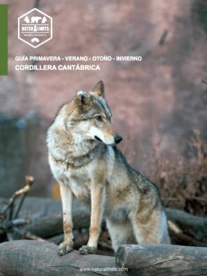 lobos-en-zamora