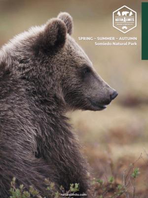 osos-pardo-naturalimits
