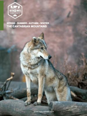 osos-zamora-naturalimits